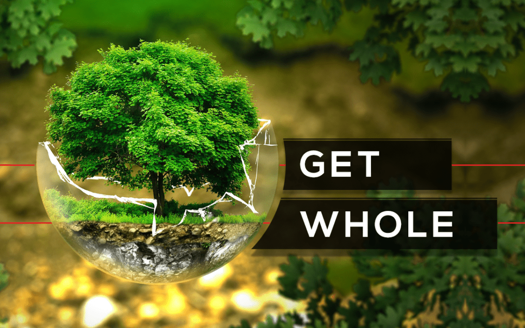 Get Whole